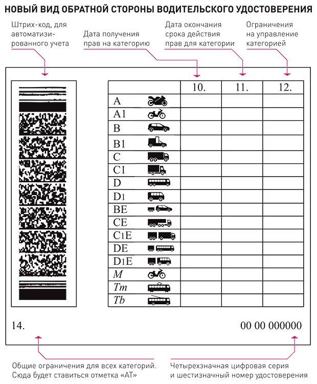 новый вид водительского удостоверения